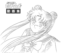 Sailor Moon Official Douga Book